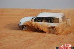 Safari Dubaj